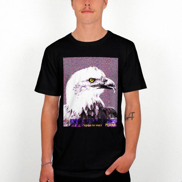 Glitch Eagle
