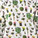 AO Ystad Cactus