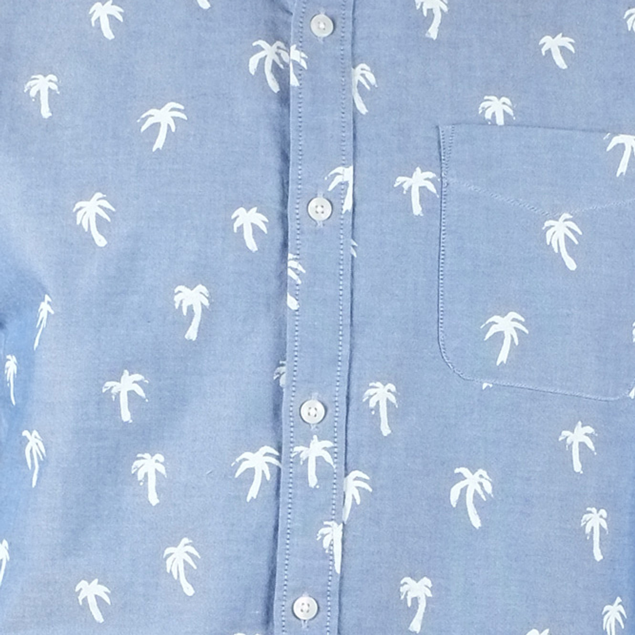 AO Shirt Painted Palms