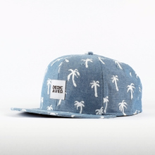 Snapback Painted Palms